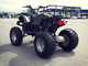 Квадроцикл WELS ATV Thunder 200